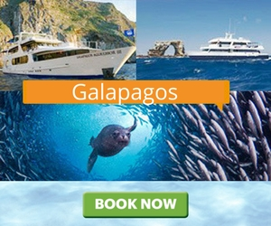Дайв-сафари Galapagos