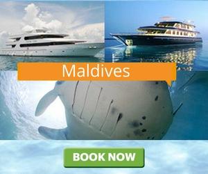 Дайв-сафари Maldives