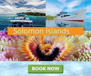 Дайв-сафари Solomon Islands