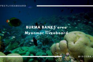 Burma banks area