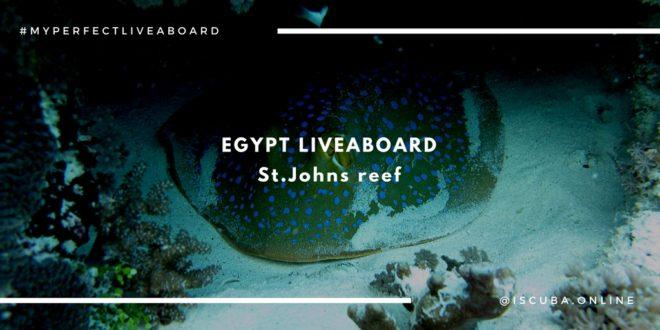 рифы St.John's