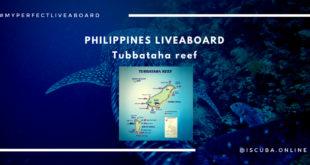 Tubbataha Reef Liveaboard