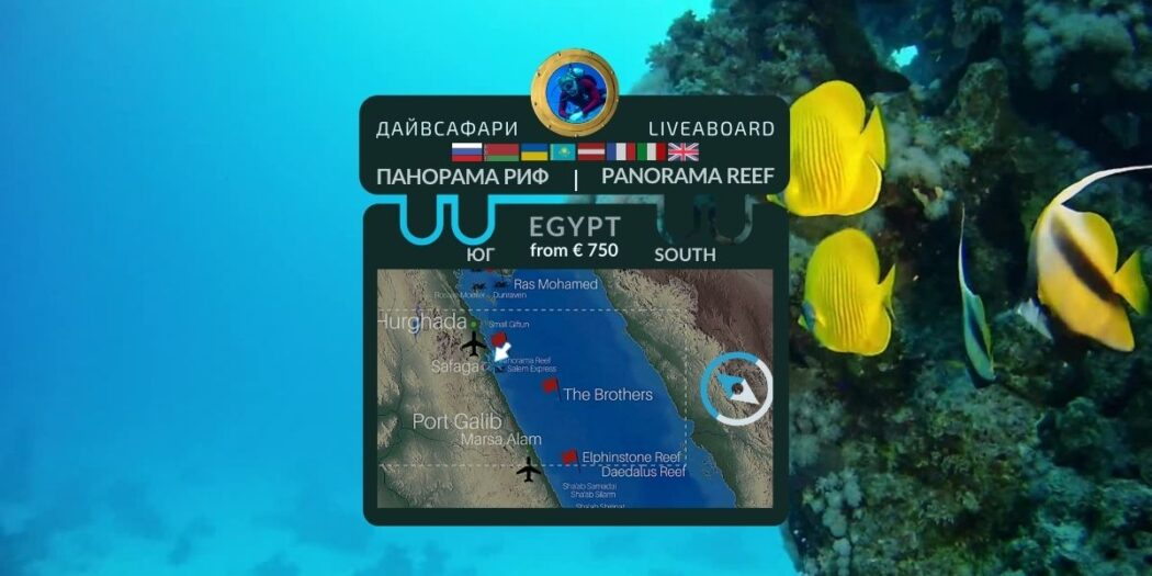 Egypt. Panorama reef