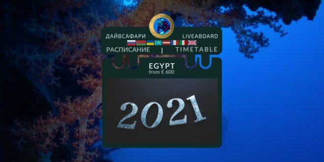 РАСПИСАНИЕ 2021. #ВыбериДайвсафари в ЕГИПТЕ.