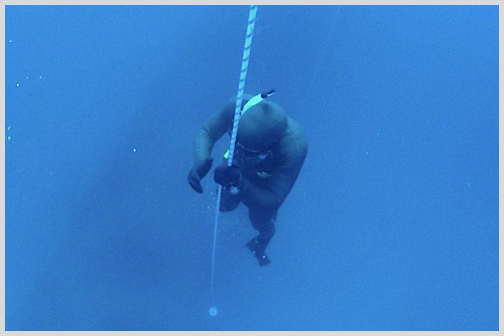freediving buy here
