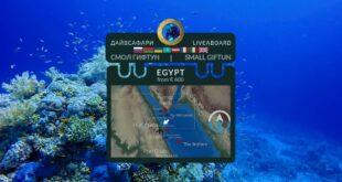 Egypt. Small Giftun