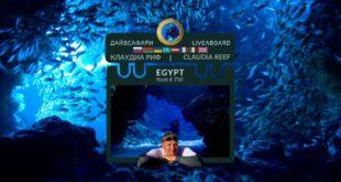 Egypt. Claudia Reef