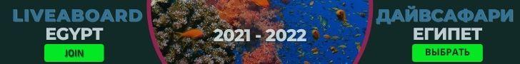 Египет: Расписание дайвсафари 2021-2022